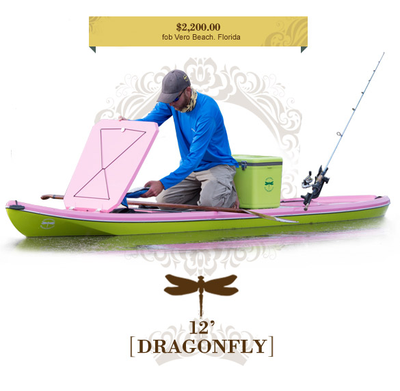 dragonfly 10 0